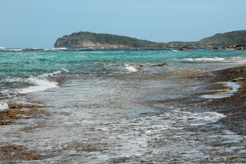 Nude beach stroking-3586